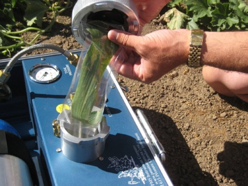 Using the Grass Compression Gland with Corn PMS Instruments