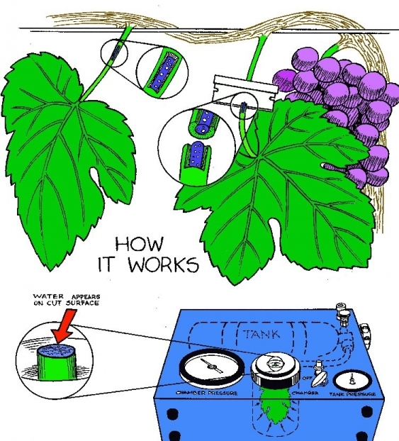 How the Pressure Chamber Works