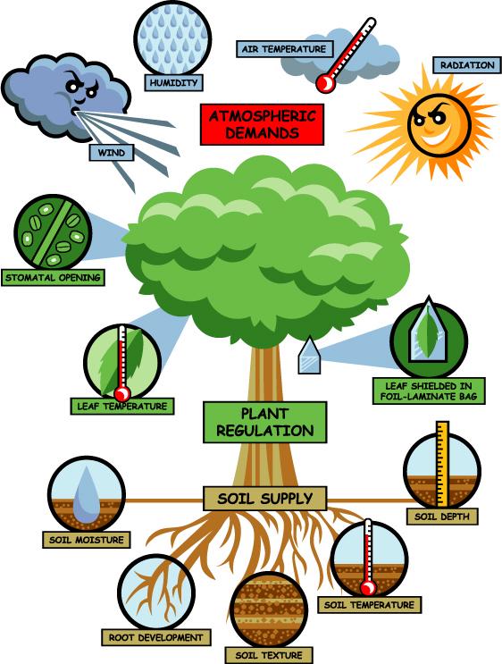 Plant Regulation diagram PMS Instruments