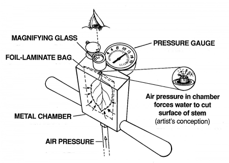 How to operate the Pump Up Chamber PMS Instruments